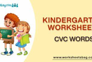 CVC Words Worksheets Download PDF