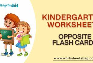 Opposite Flash Cards Worksheets Download PDF