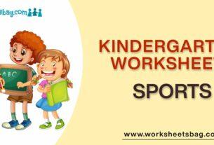 Sports Worksheets Download PDF