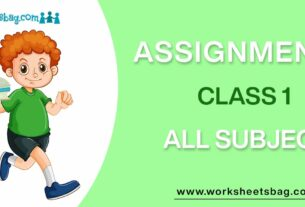 Assignments For Class 1 Download PDF