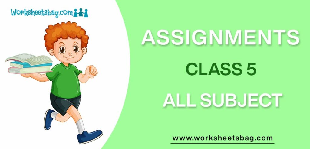 Assignments For Class 5 Download PDF