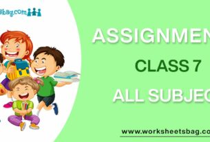 Assignments For Class 7 Download PDF
