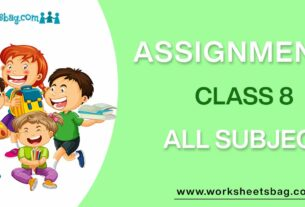 Assignments For Class 8 Download PDF