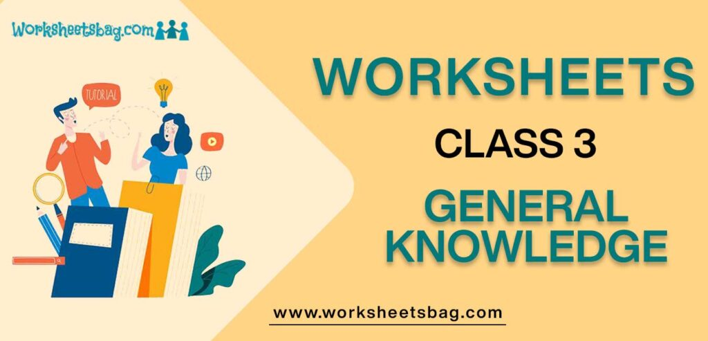 Worksheet for Class 3 General Knowledge