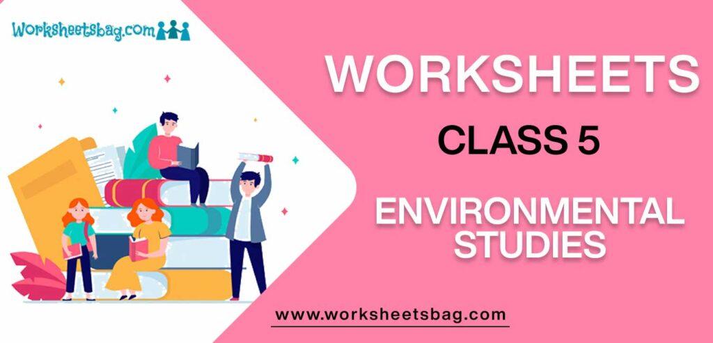 Worksheets for Class 5 Environmental Studies